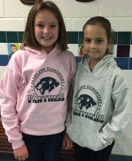 Photo of grey and pink hoodie sweatshirts.