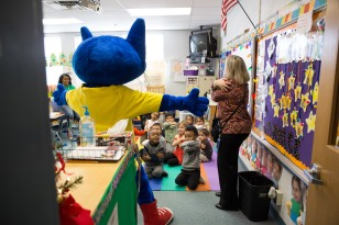 Pete the Cat-36